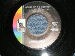 """画像1: CANNED HEAT  - A) GOING UP THE COUNTRY  B) ONE KIND FAVOR (Ex+/Ex+) / 1968 US AMERICA ORIGINAL Used 7""""Single"""