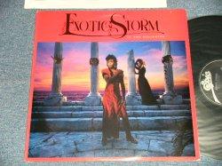 画像1: EXOTIC STORM - IN THE BEGINNING (Ex++/MINT-) /1986 US AMERICA ORIGINAL Used LP