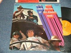 画像1: WILLIE AND THE RED RUBBER BAND - WE'RE COMIN' UP (Ex+/MINT- EDSP) / 1969 US AMERICA ORIGINAL STEREO Used LP