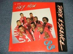"""画像1: RARE ESSENCE - HEY NOW (SEALED) / 1992/1988 US AMERICA ORIGINAL """"BRAND NEW SEALED""""  12"""""""