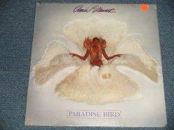 """画像1: AMII STEWART - PARADISE BIRD (SEALED) /1979 US AMERICA ORIGINAL """"BRAND NEW SEALED"""" LP"""