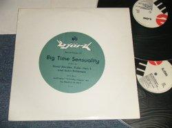 """画像1: BJORK (THE SUGARCUBES) - BIG TIME SENSUALITY (Ex++/MINT-) / 1993 US AMERICA ORIGINAL Used Double 12"""""""