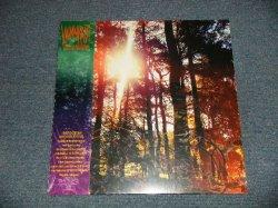 """画像1: Viviankrist - Cross Modulation - Bootleg Remixes (SEALED) / 2020 UK ENGLAND ORIGINAL """"BRAND NEW SEALED"""" LP"""