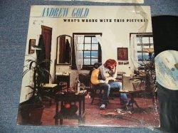 画像1: ANDREW GOLD - WHAT'S WRONG WITH THIS PICTURE?  (Ex+++/Ex++ Looks:VG+++)  / 1976  US AMERICA ORIGINAL Used LP