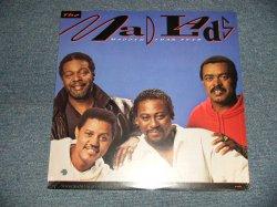 """画像1: MAD LADS - MADDER THAN EVER (SEALED BB) / 1990 US AMERICA  ORIGINAL """"BRAND NEW SEALED"""" LP"""