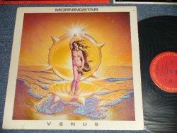 画像1: MORNINGSTAR - VENUS (Ex++/MINT- B-1:Ex) / 1979 US AMERICA ORIGINAL Used LP