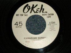 """画像1: The Vibrations - A)Canadian Sunset   B)The Story Of A Starry Night (MINT-/MINT-) 1966 US AMERICA ORIGINAL """"WHITE LABEL PROMO"""" Used 7"""" 45 rpm Single"""